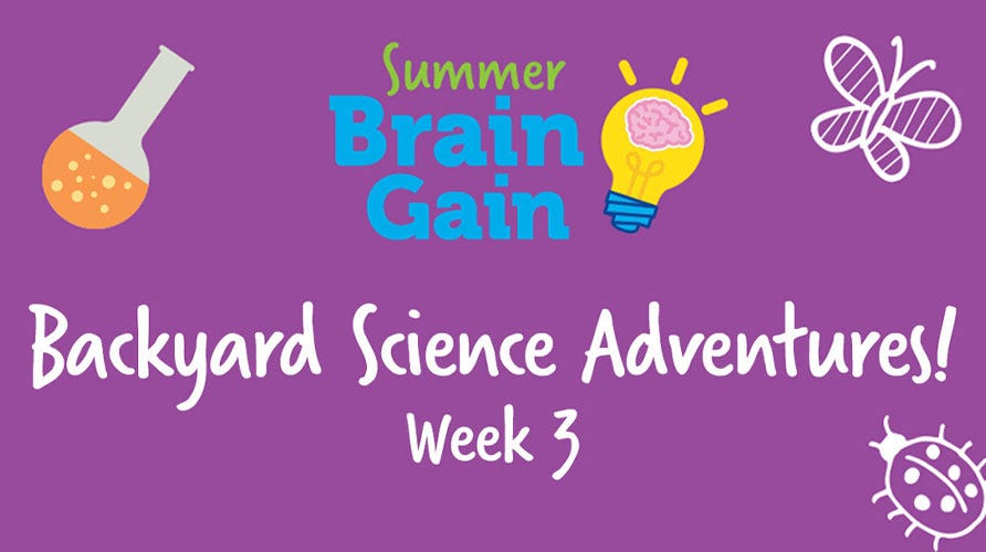 Summer Brain Gain: Backyard Science Adventures!